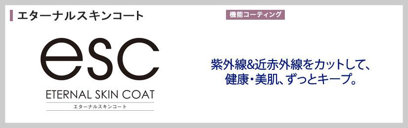 伊達メガネ用美肌レンズ ESC(エターナルスキンコート)